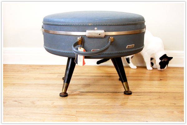 cat dog pet bet DIY make your own vintage suitcase thrift