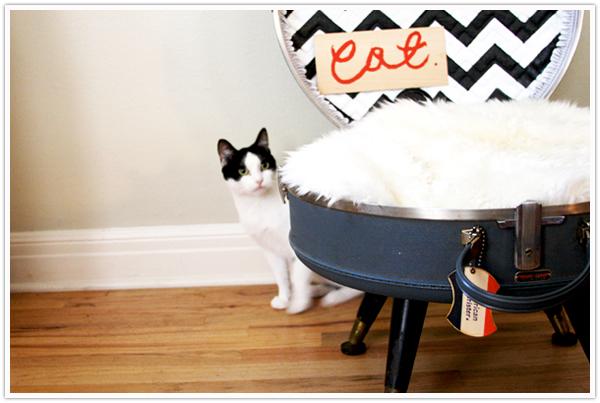 cat dog pet bet DIY make your own vintage suitcase thrift