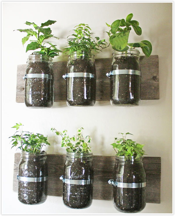 Transformed hanging herb garden camille styles diy build your own herb garden indoor hanging easy simple step by step kitchen workwithnaturefo