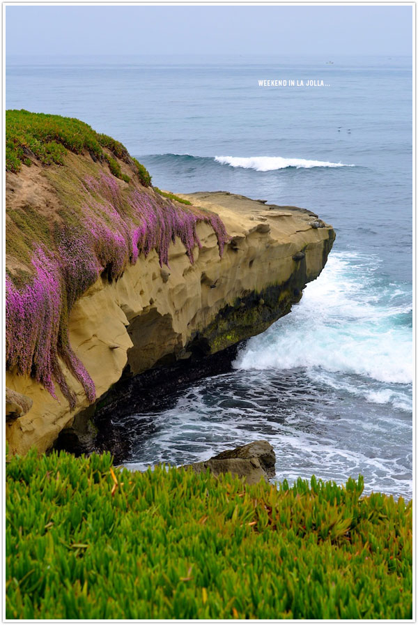 LaJolla_Cliffs