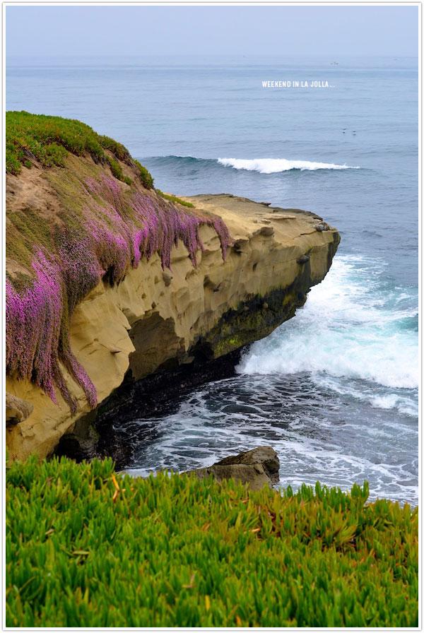 LaJolla_Cliffs