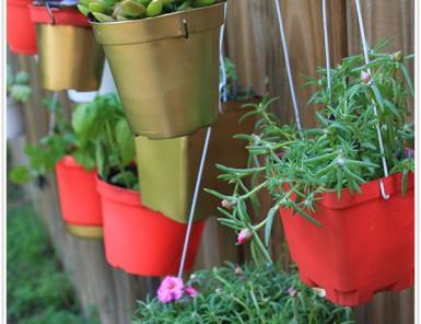 claire transformed diy plant garden hanging spring ideas inspiration