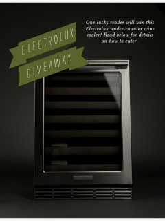 electrolux giveaway from Camille Styles