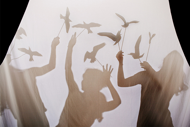 """The Birds"" Shadow Puppets DIY 