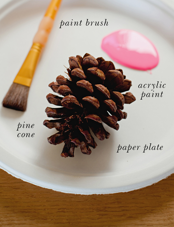 Neon Dipped Pine Cone Placecard Holder DIY | Camille Styles