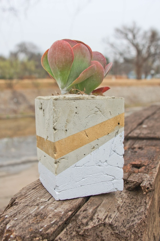 DIY Cement Planter | Claire Zinnecker for Camille Styles