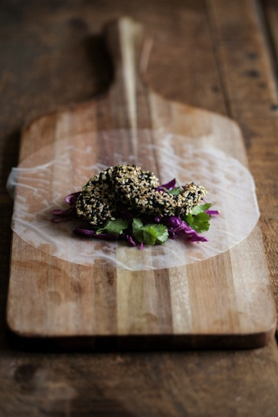 Sesame Crusted Avocado and Cabbage Spring Rolls | Best Avocado Recipes | Camille Styles