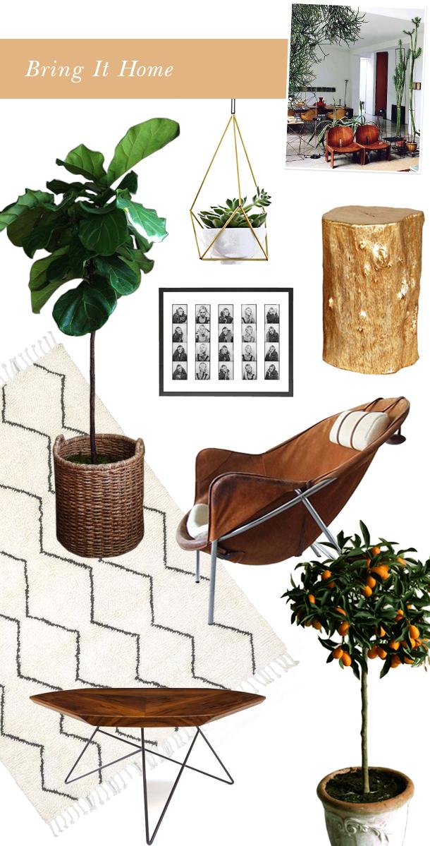 Bring It Home Indoor Garden Camille Styles