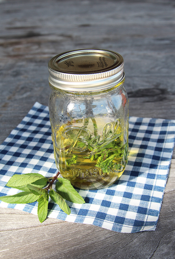 Classic Mint Julep Recipe   Camille Styles