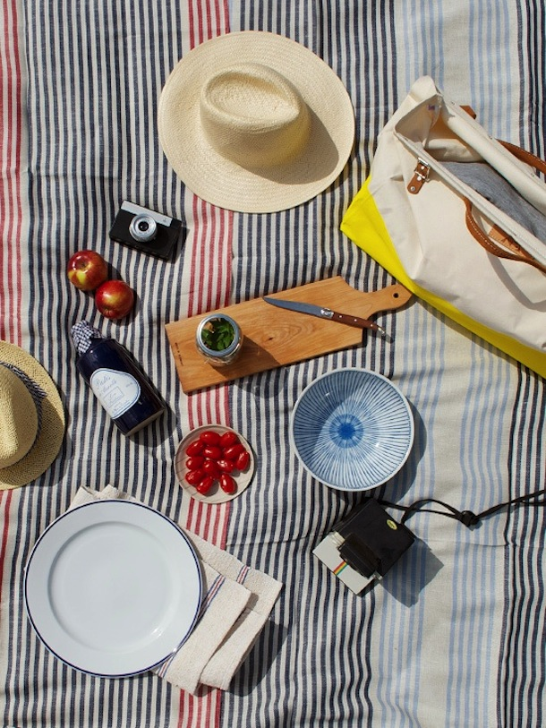 striped picnic blanket from the new domestic shop | Camille Styles