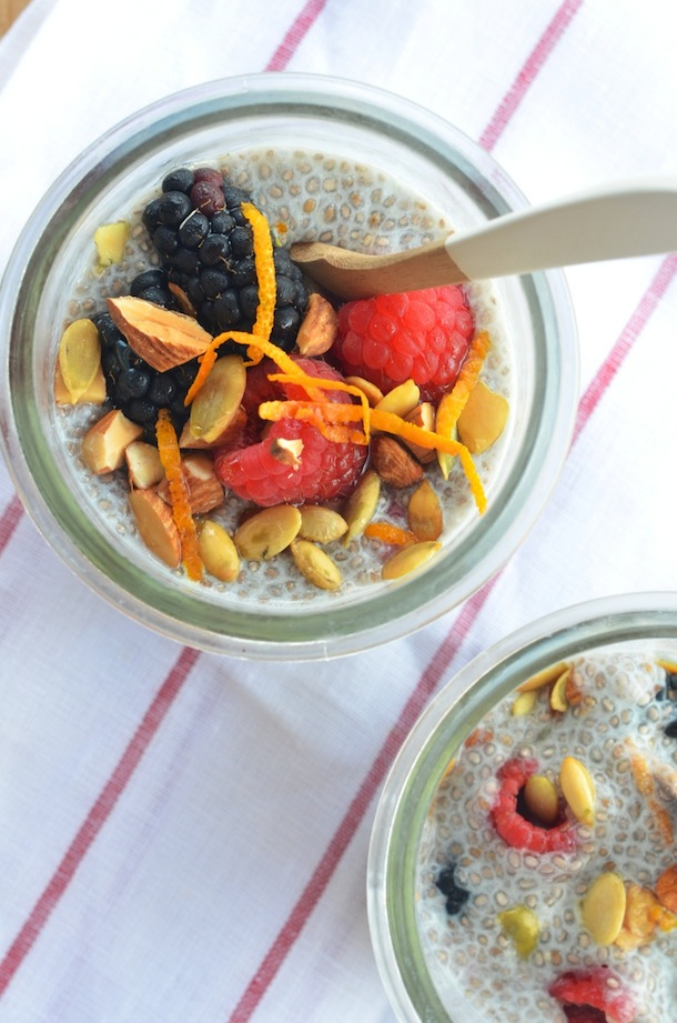 Ginger Berry Chia Seed Pudding Recipe | Camille Styles