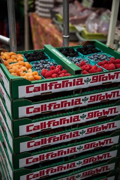 Santa Monica Farmer's Market | Elizabeth Winslow for Camille Styles