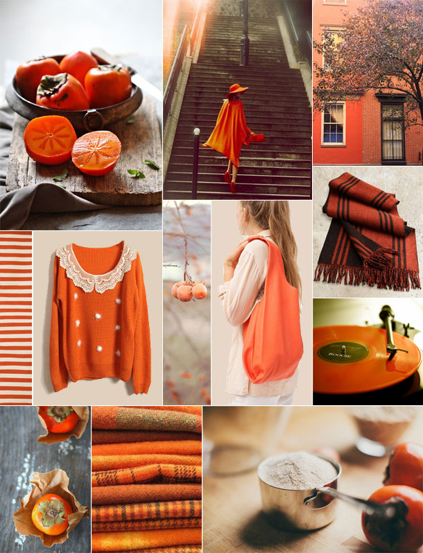 persimmon color inspiration | camille styles