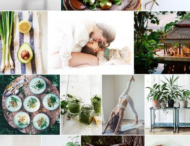 Green Wellness Inspiration | Camille Styles