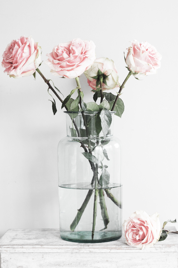 Roses, photo from By Mildred | Camille Styles
