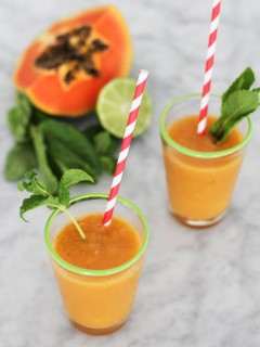 Mango Papaya Smoothie Recipe | Camille Styles