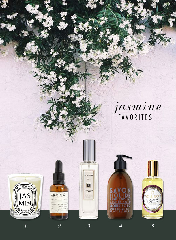 Best Jasmine Products | Camille Styles