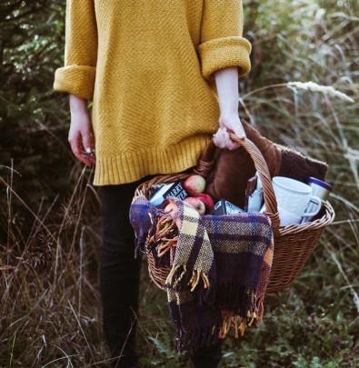 fall picnic, apples