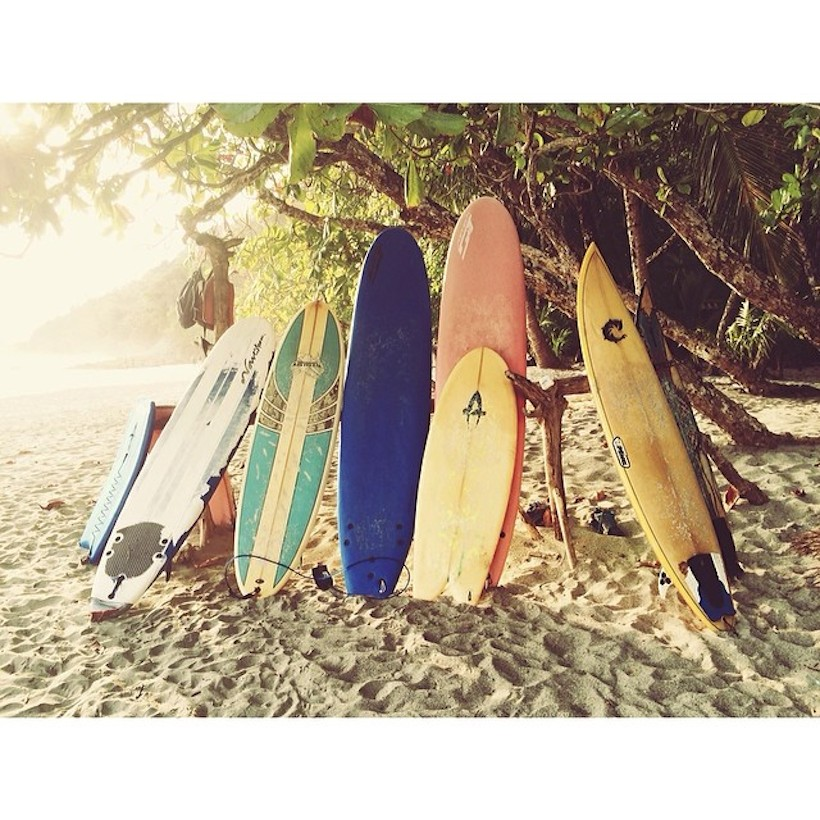surfboard collection at the beach