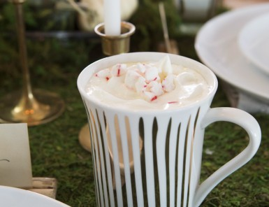 White chocolate peppermint hot cocoa