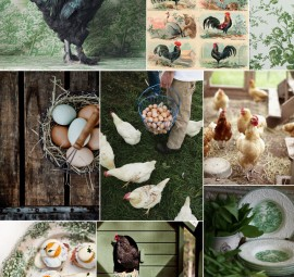 Fowl Play Inspiration Board