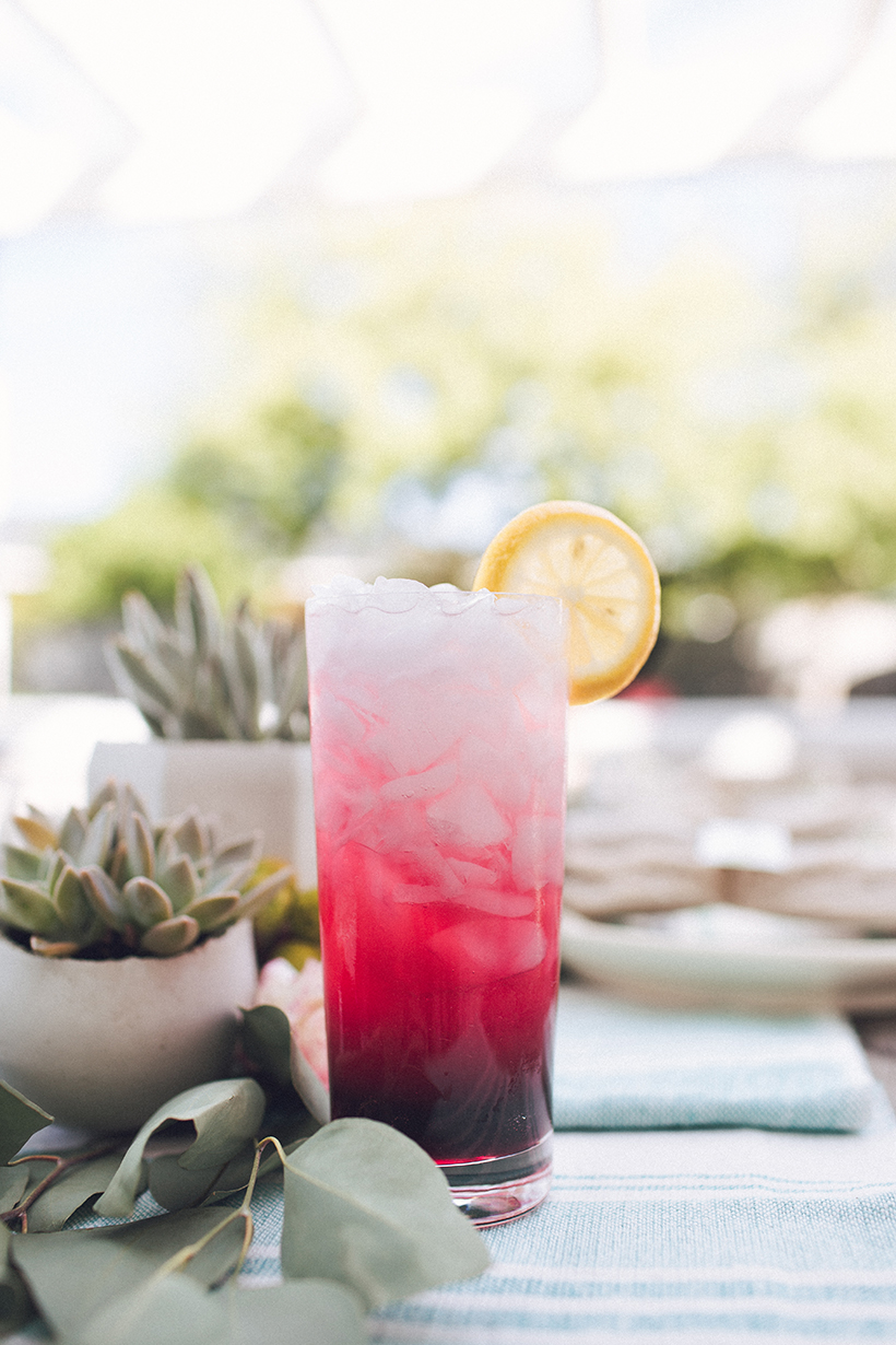 pink icy cocktail & succulents for summer party