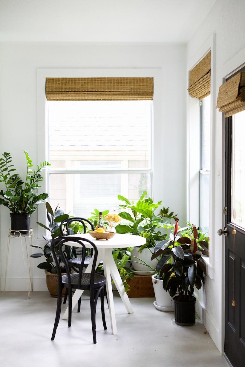 modern natural lit dining room