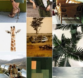 inspired by safari green