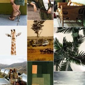 inspired by safari green
