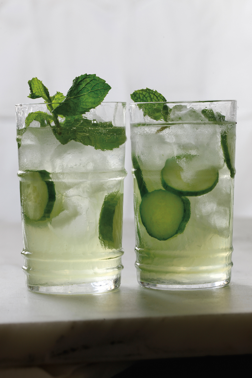 Cucumber Spritzer with Mint - Camille Styles