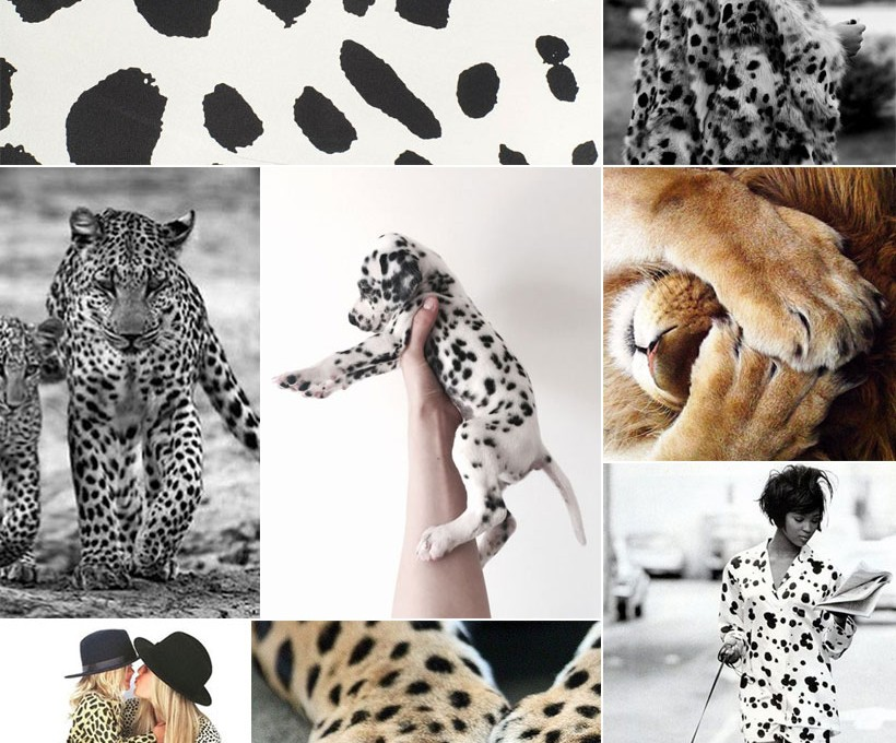 inspired by spots in nature