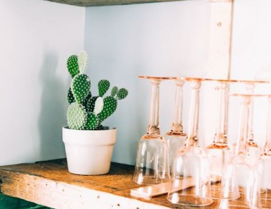 open kitchen shelving with cactus and pretty glassware