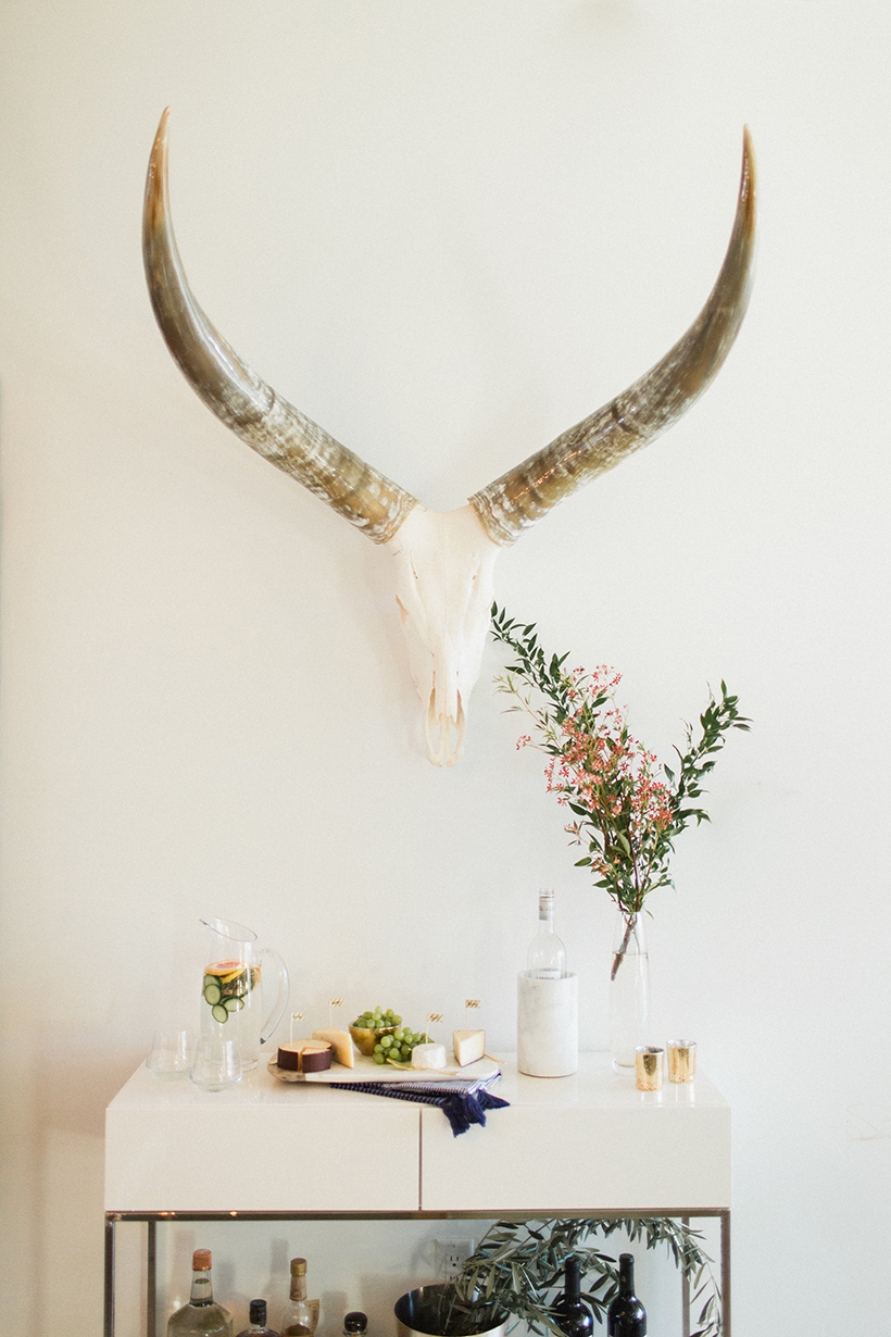 found skull and horns