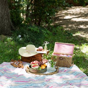 the perfect spot for a summer picnic