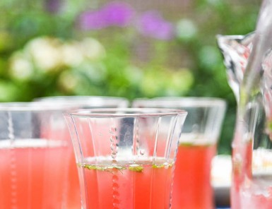 Watermelon Mint Vodka Cocktails