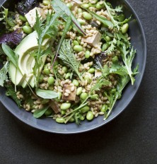 15 Best Tofu Recipes -- Lemon-Soy Edamame Barley Bowl