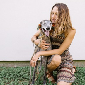 a greyhound named aqua girl