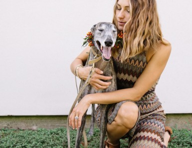 a greyhound named aqua girl