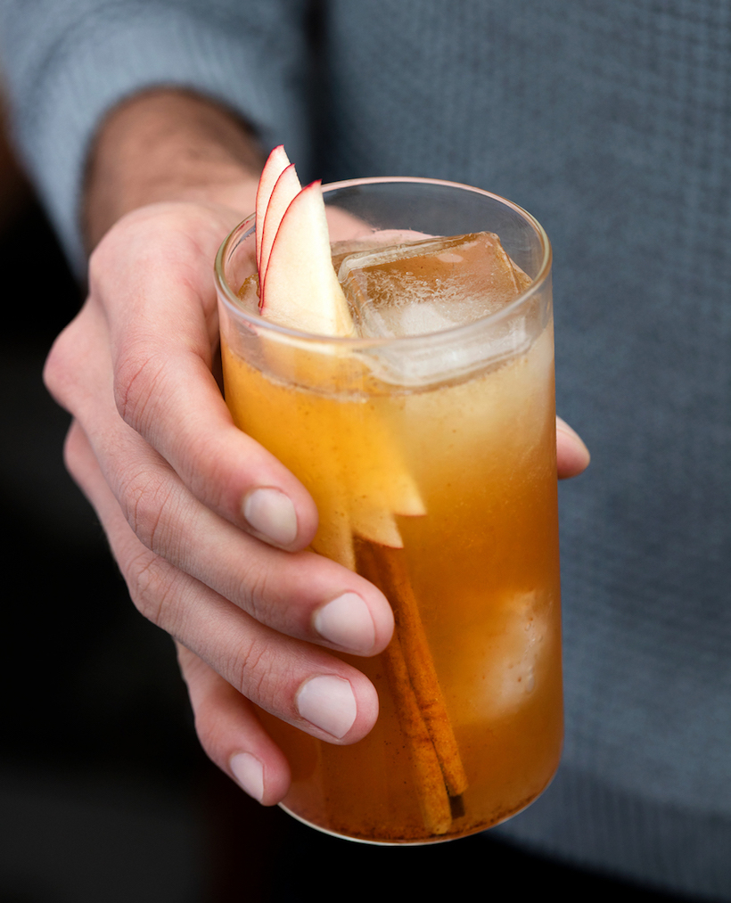 Spiced Hard Apple Cider Recipe — Dishmaps