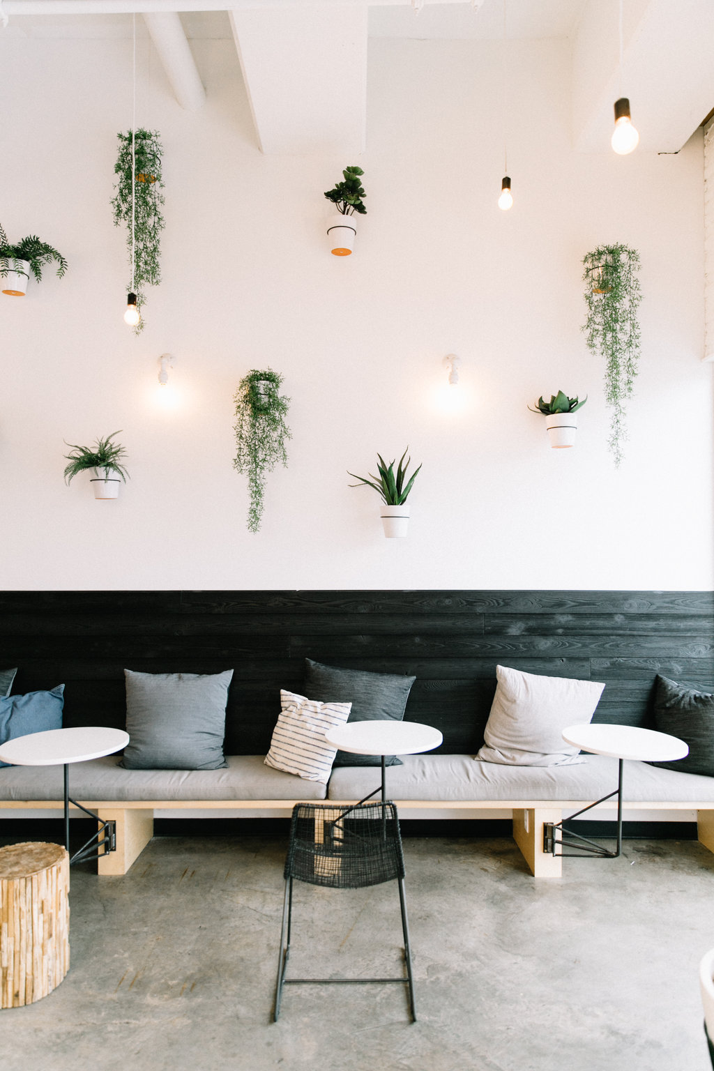 plant wall at juice society in austin