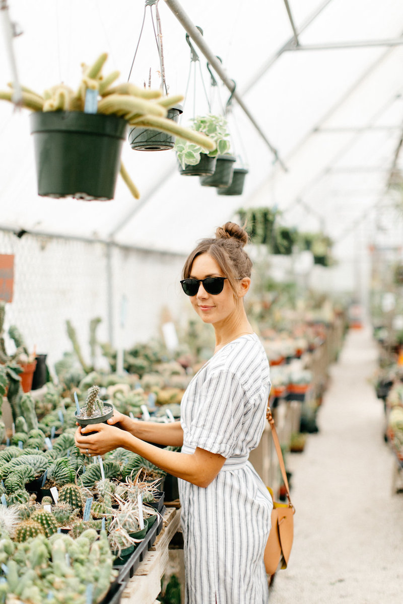 Plant Shopping Tips from East Austin Succulents in a Striped Wrap Dress