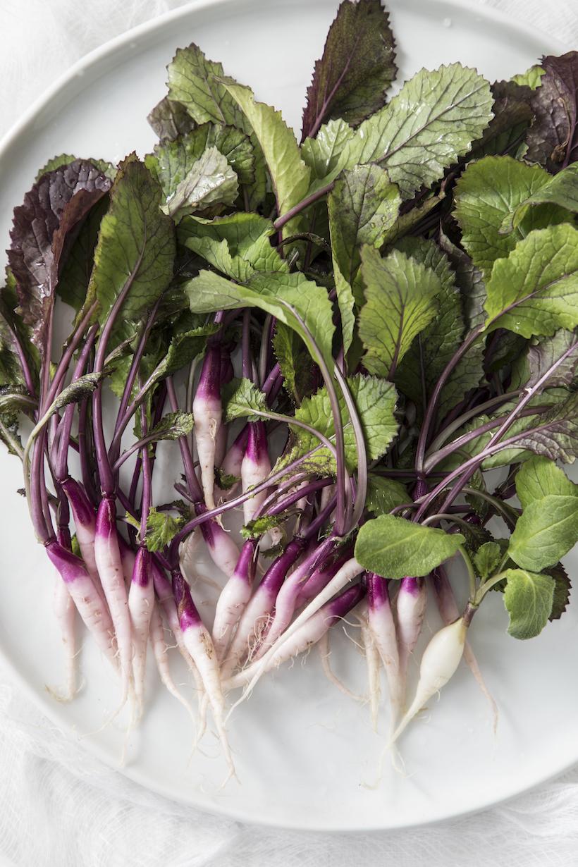 Purple Salad Recipe by Libbie Summers