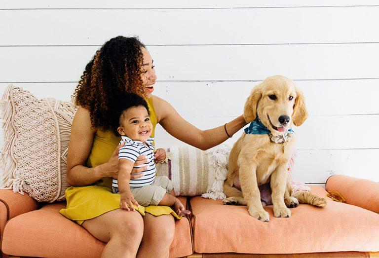Socializa a tu cachorro (¡y diviértete mientras lo haces!)