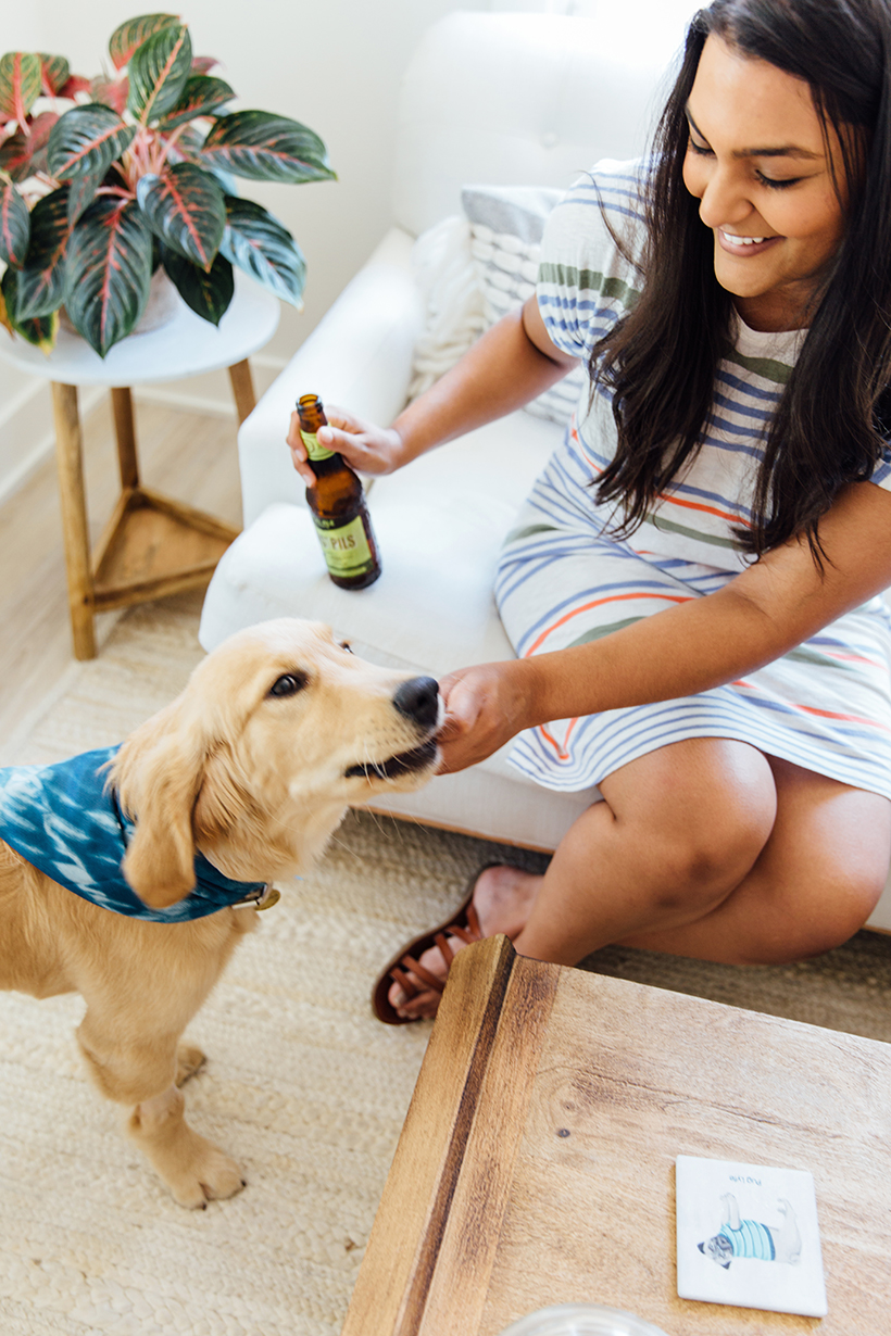 Socialize your puppy (and have fun while you're at it!)