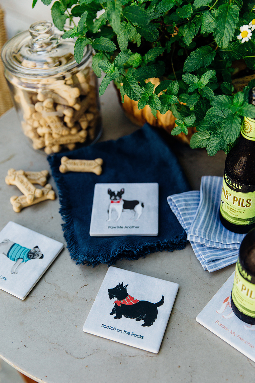 cute custom dog coasters from shutterfly