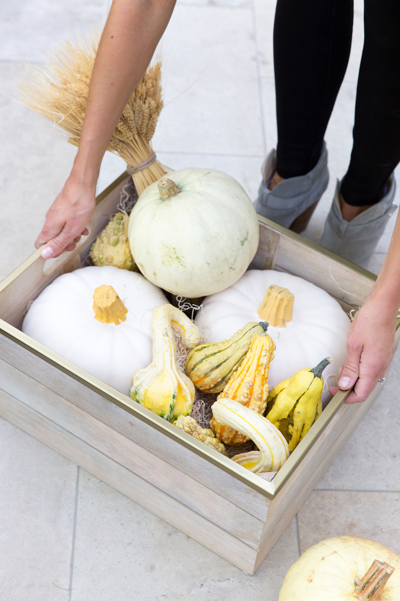 wooden basket with fall colors pumpkins and gourds