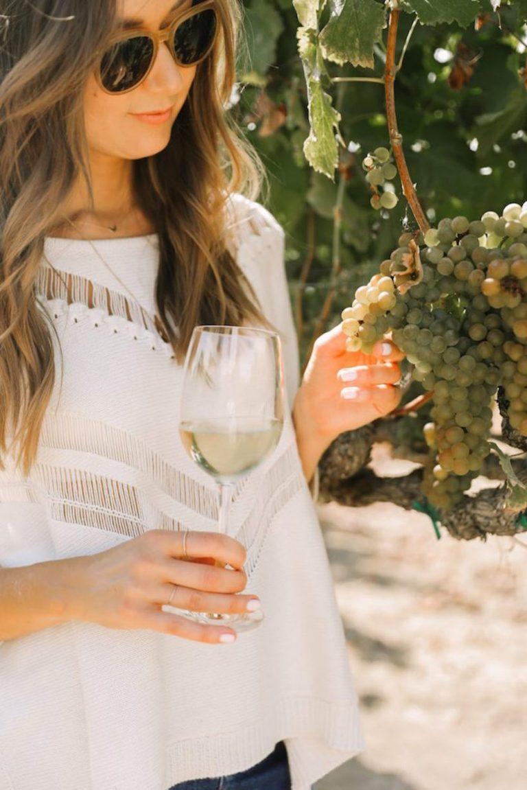 natural wine, sonoma county, vineyard tour