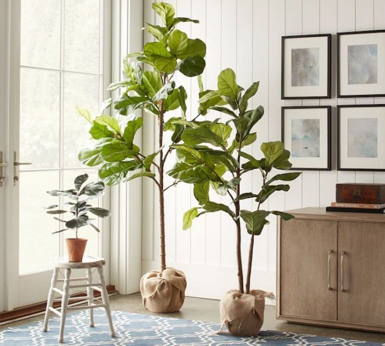 the best faux house plants on the market