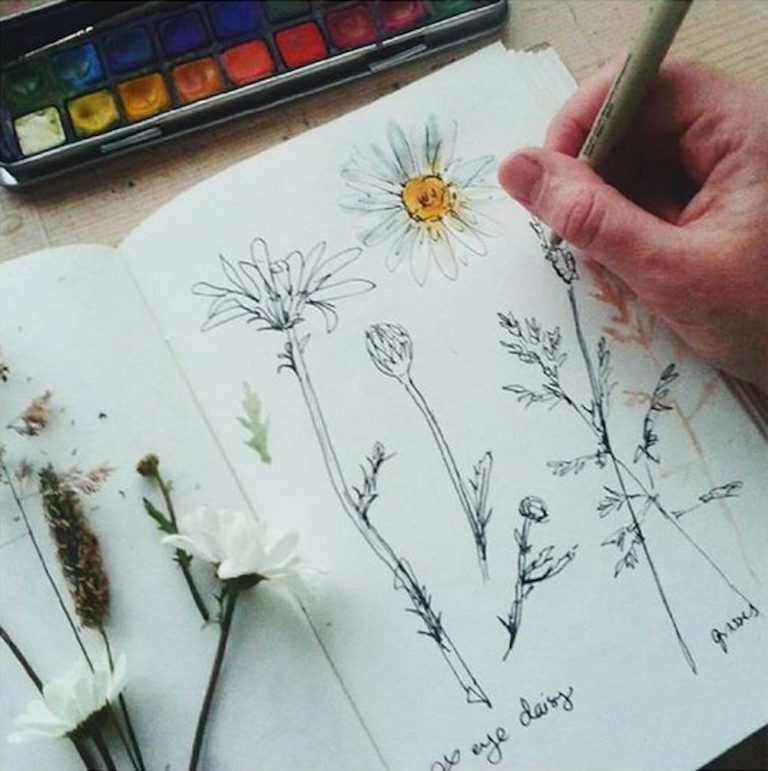nature journaling, journal, writing, drawing, art