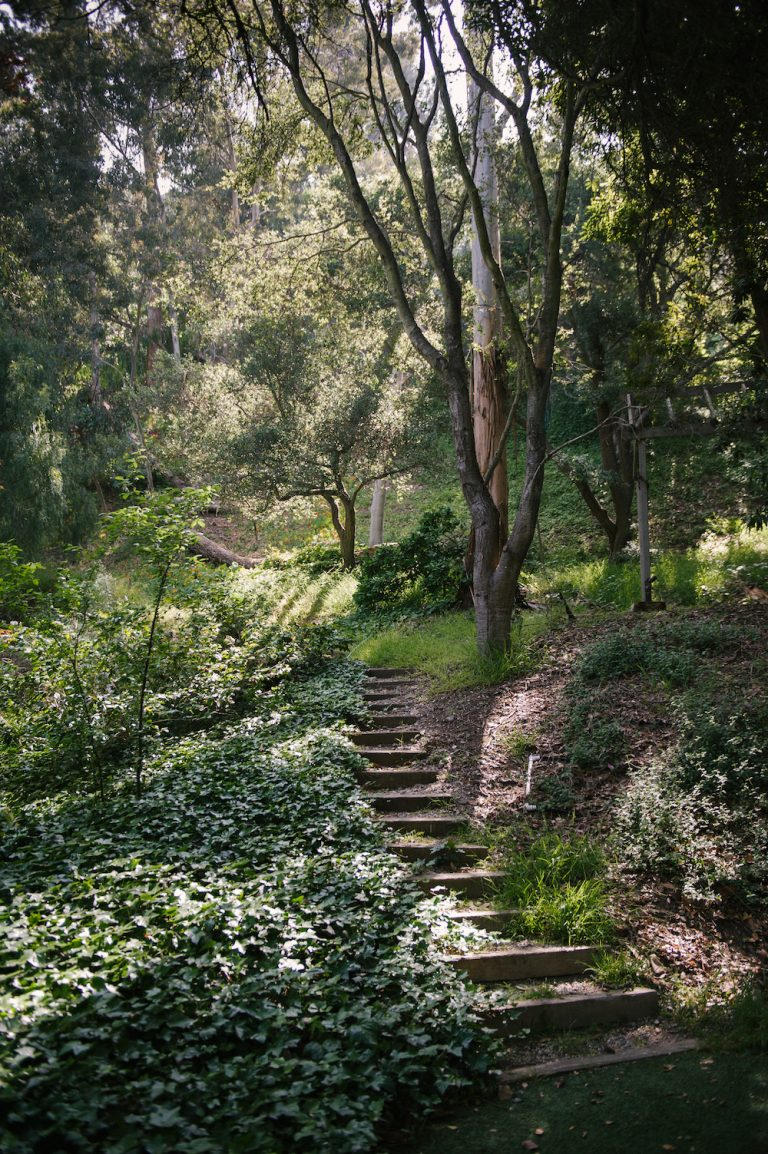 nature, california, beautiful scenery